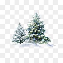 圣诞雪树素材