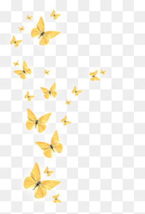黄色飞舞的蝴蝶