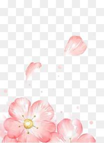 漂浮粉色花瓣