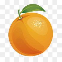 矢量卡通大橙子