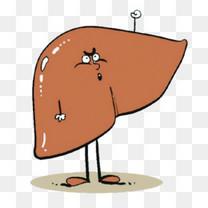 卡通肝脏图片
