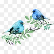 手绘小清新蓝色的鸟和树枝