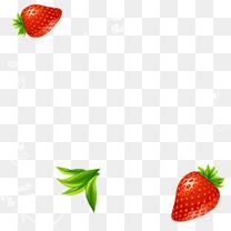 精美水果清新草莓