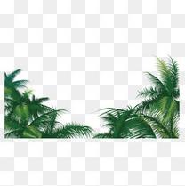 椰子树矢量素材