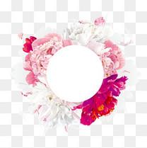 文案背景元素 红色粉色 圆环 花卉