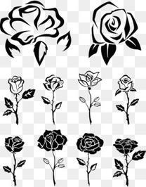 手绘线描玫瑰合集