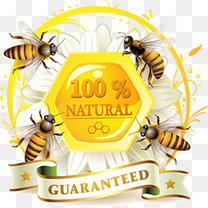 蜜蜂和蜂蜜标签矢量素材