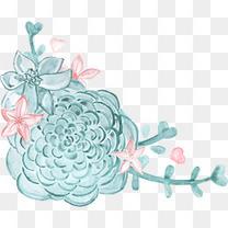 粉色花朵和爱心图案多肉植物