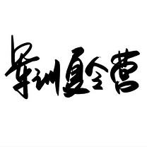 千库原创 军训夏令营 手写毛笔字 创意字体