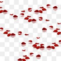 遍地玫瑰花瓣