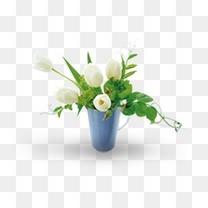 家居清新装饰花盆