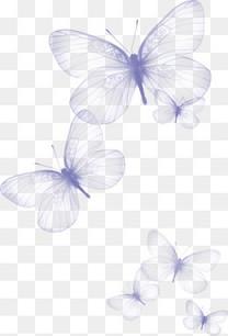 飞舞的蝴蝶 梦幻蝴蝶