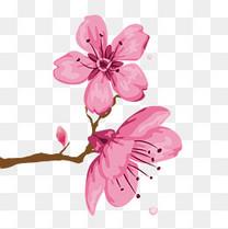 粉色系一串桃花特写