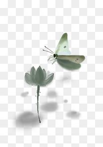 中国水墨手绘蝴蝶