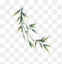 国画水墨中国风竹子