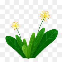 手绘美丽植物绿草