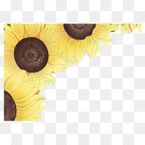 父亲节小清新手绘向日葵装饰