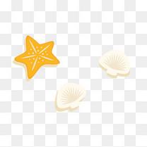 海星和小贝壳png