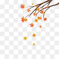 秋分手绘秋天红色枫叶