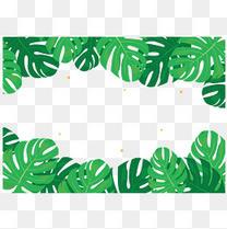 卡通矢量小清新绿色树叶龟背叶边框